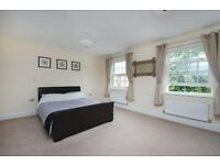 Spacious double room in modern townhouse located in Fulford