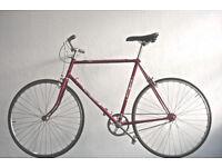 Superb Lightweight Single Speed Mans/ladies bike, Serviced Frame 23