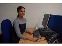 Audit and Effectiveness Volunteer
