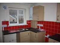 Spacious two bed flat available immediately in Maerdy! NO BOND OR DEPOSIT