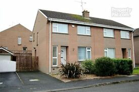 3 BEDROOM SEMI-DETACHED HOUSE - THE GLEBE, PORTADOWN