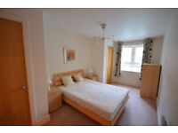 Lovely 1 bed flat near King George DLR station ideal for couples/singles/corporate! Avialabel now