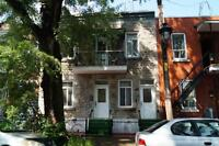 Duplex - Villeray/Saint-Michel/Parc-Extension - 18608811