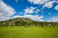 Salmon Arm - Prime Development Property