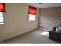 One bedroomed studio flat to let. Town centre. Working people only. No pets. No children.