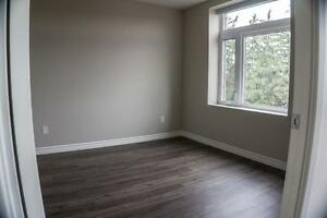 RENTING QUICK -  Luxury Apartments in Preston - Linden Crossing Cambridge Kitchener Area image 8