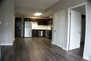 RENTING QUICK -  Luxury Apartments in Preston - Linden Crossing Cambridge Kitchener Area image 9
