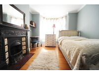 Lovely bright room with fireplace (with small double bed) for a month