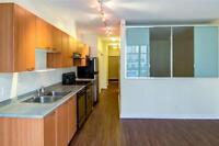 1 BDR + DEN in heart of Downtown - in-suite Laundry, Storage, B