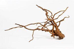 1 Stck. Moorkienwurzel Wurzel Moorwurzel Fingerwurzel Aquarium Holz XL 45-70 cm