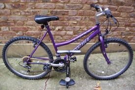 Caprice Probike for city use with a pump