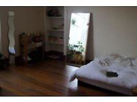 Room to rent for 1 month: JULY. 250£ the month all included! 2 flatmates, South-West side