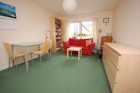 Fantastic 1 bedroom flat with separate lounge/kitchen in Holyrood available March 2018