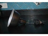 Black Pet Heat Lamp