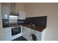 UNFURNISHED ONE BEDROOM TENEMENT FLAT- FULLY REFURBISHED THROUGHOUT