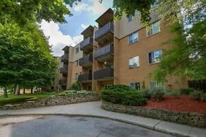 Modern Renovated One Bedroom in Strathroy - New Kitchens! London Ontario image 10