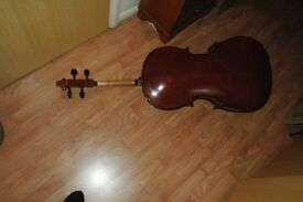 3/4 sized Stentor II cello