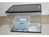 Glass fish tank with food and a net