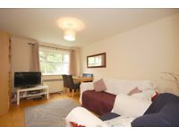 Modern and spacious one bedroom apartment within a short walk of Tooting Bec common and tube station