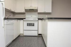 UWO Apts. near Oxford St. E & Talbot in London - WIFI Incl. London Ontario image 3