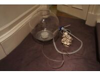 Spherical Fish Tank & Cleaning Pump - Great Condition