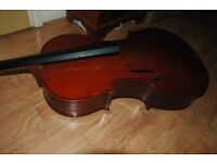Primavera Prima 100 4/4 sized cello