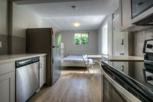 NEWLY RENOVATED BACHELOR SUITE @ 647 VICTORIA