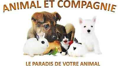 ANIMAL ET COMPAGNIE