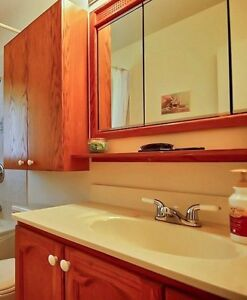 Used bathroom counter and medicine cabinet