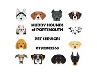 BRAND NEW PET SERVICES IN PORTSMOUTH!