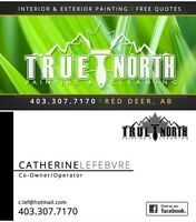True North Cleaning (Move in/out or regulars)