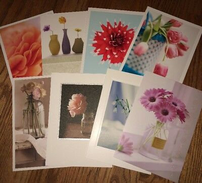 Hallmark Blank Floral Cards (8) & Fancy Envelopes - NWT