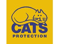 Cats Protection Chiltern are looking for Volunteers