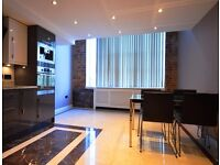 STUNNING BRIGHT & SPACIOUS 2 BED APARTMENT EXCELLENT TRANSPORT LINKS AVAILABLE NOW FOR LONG LET