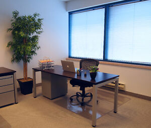New Co-Working Space in Burlington (Private, Shared & Virtual) Oakville / Halton Region Toronto (GTA) image 6