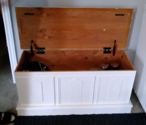 Bench with storage (New Price)