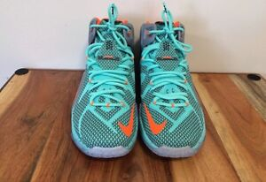 Brand new authentic Nike LeBron 12 basketball shoes size 11