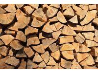 Firewood logs 🌲🔥
