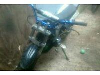 Kdx 125 pitbike