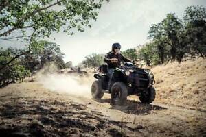 Kawasaki Brute Force Rutherford Maitland Area Preview