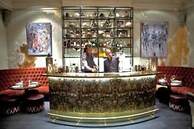 Bartender in Mayfair, Piccadilly