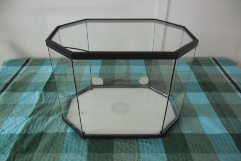 Fish Tanks For Sale Toowoomba Octagonal Fish Reptile