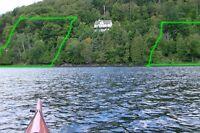 Domaine boisé en bordure de lac navigable