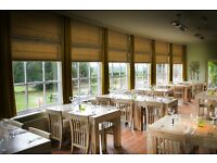 Busy Kitchen Needs Commis Chef to Serve Fresh Food