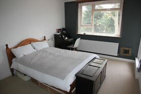 Clapham Common 2 double bed flat avail from February - flexible dates