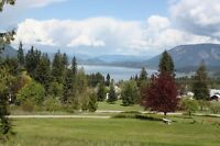 Lake View Acreage, Development Potential,