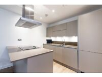 VACANT! BRAND NEW UNLIVED IN DESIGNER FURNISHED 3 BEDROOM 2 BATH APARTMENT IN THE VIBE DALSTON ANGEL