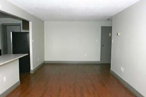 Beautiful and Luxurious Suites Available for Rent - Free month Kitchener / Waterloo Kitchener Area image 10