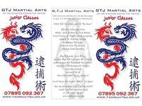JUNIOR GTJ MARTIAL ARTS CLASSES