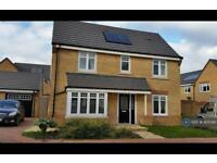 4 bedroom house in Holmesfield Grove, Waverley, Rotherham, S60 (4 bed)
